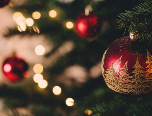 Llegan las vacaciones de Navidad, está tu casa o tu negocio realmente protegido?